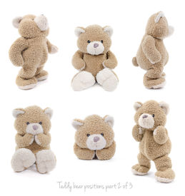 picture of stuffed animals  - Set of positions of a stuffed teddy bear - JPG