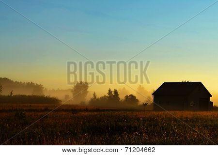 Foggy sunrise landscape