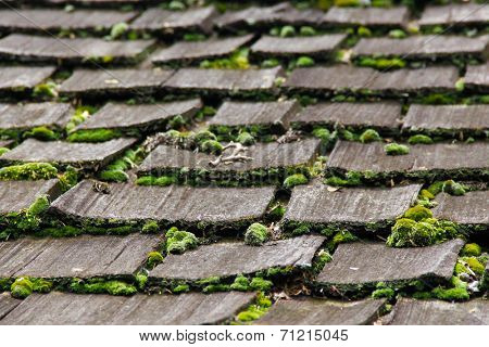 Wood shingles on an old roof