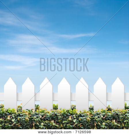 Sky And White Fences