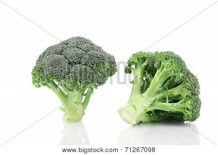 Two fresh broccoli.