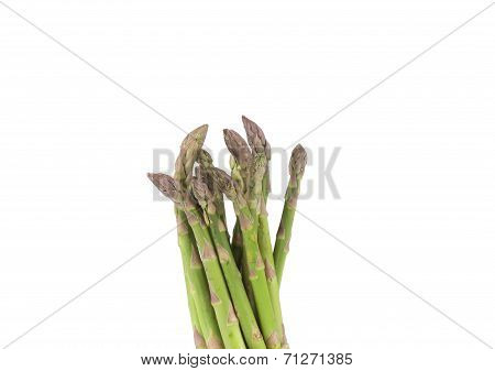 Close up of top asparaguses.