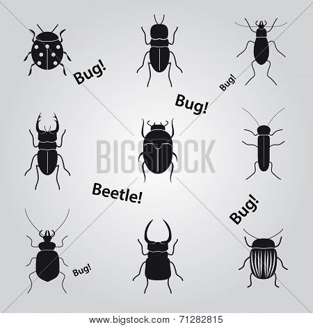Bugs And Beetles Icons Set Eps10