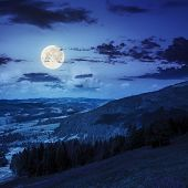 stock photo of moon-flower  - purple flowers on of mountain range with coniferous forest and village at night in full moon light - JPG