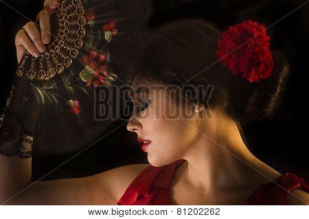 Female Flamenco Dancer