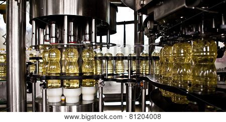 Factory for the production of edible oils. Shallow DOFF.
