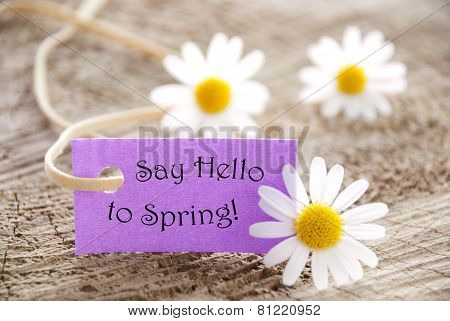 Purple Label With Quote Say Hello To Spring