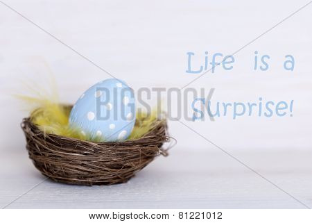 One Blue Easter Egg In Nest With Life Quote Life Is Surprise