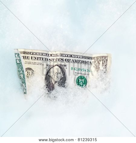 Dollar Bill In A Snow