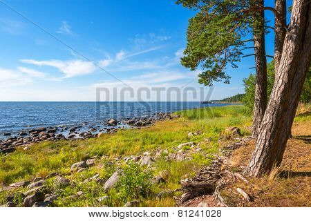 Coastline Of Baltic Sea. Estonia