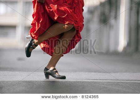 Flamenco legs