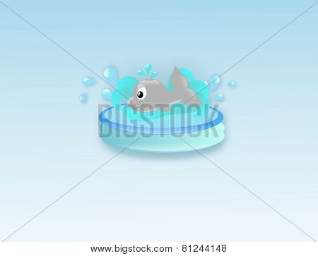 Cute Whale In Water Pool