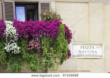 Italian Balcony Decorated With Flowers Petunias