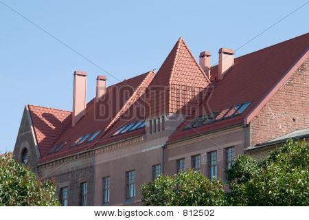Tile roof of house