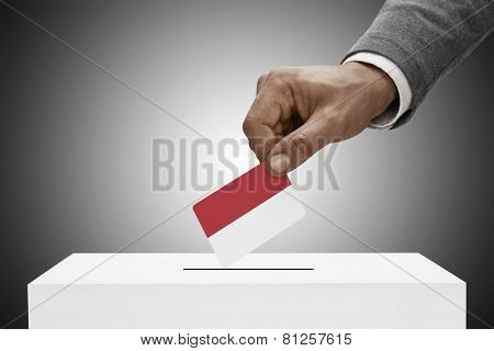 Black Male Holding Flag. Voting Concept - Monaco