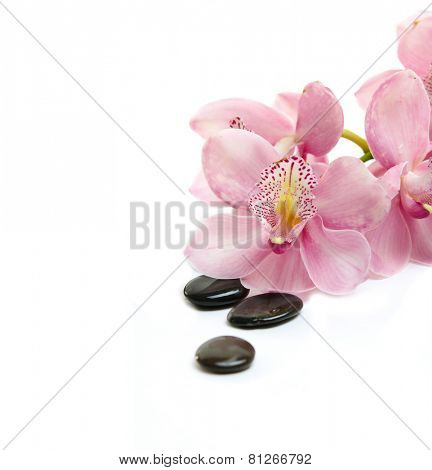 Black stones with pink orchid