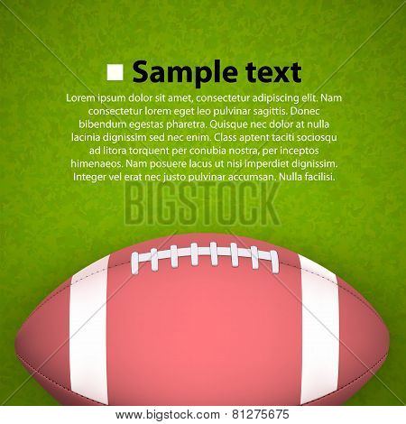 Rugby ball on the field. Vector