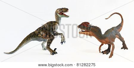 A Dilophosaurus And A Velociraptor Face Off