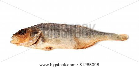 Sun-dried Stockfish Isolated On White Background