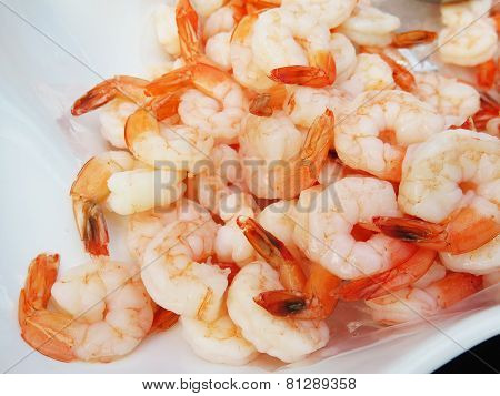 Closedup Shrimp For Cocktail