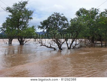 Flooded Scenery In Laos