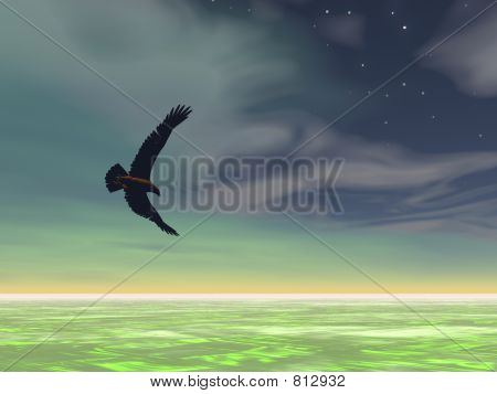 Surreal Eagle 3