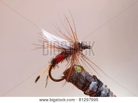 Red Fly Fishing Lure