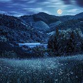 image of moon-flower  - composite mountain summer landscape - JPG