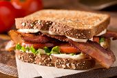 pic of tomato sandwich  - A delicious bacon lettuce and tomato blt sandwich - JPG