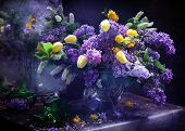 picture of jug  - Lilac and yellow tulips in a transparent jug - JPG