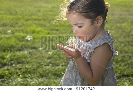 Blowing On A Dandelion Over Green