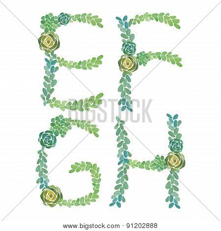 Watercolor succulent plant letter on white backgraund