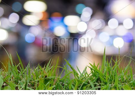 Defocus And Blur Image Of Ggrass And Beautiful Abstract Colorful