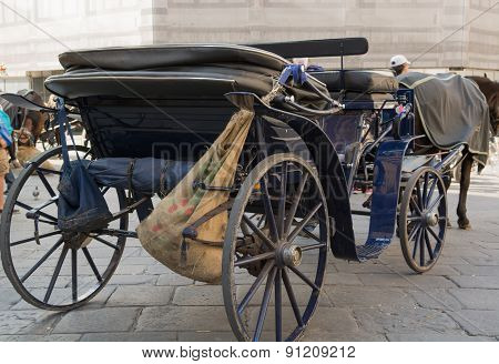 Horse-drawn Carriage In Florence