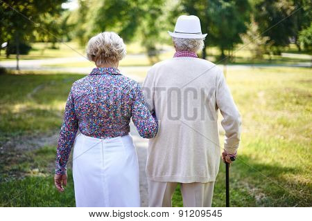 Rear view of seniors taking a walk in the park