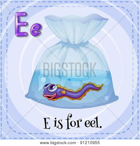 Flashcard letter E is for eel