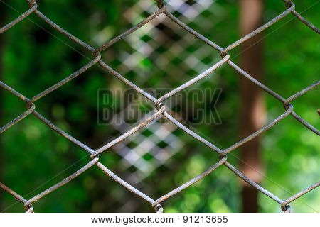 wire mesh steel with natural background