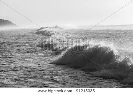 Wave Ocean Black White