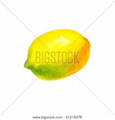 Realistic watercolor illustration lemon isolated on white background vector