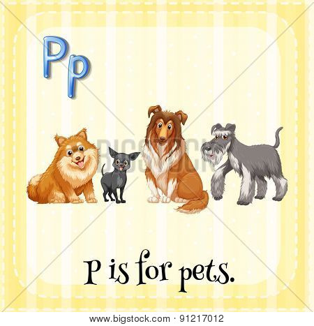 Flashcard alphabet P is for pets