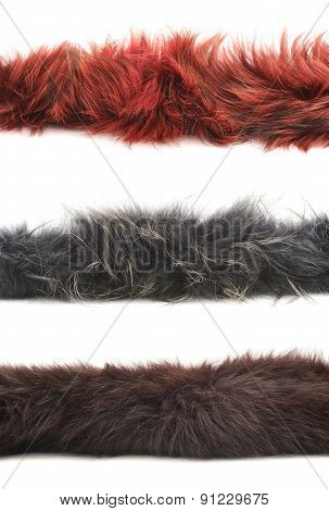 Strip of fur isolated