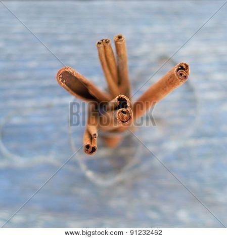 dried cinnamon sticks the beam top view