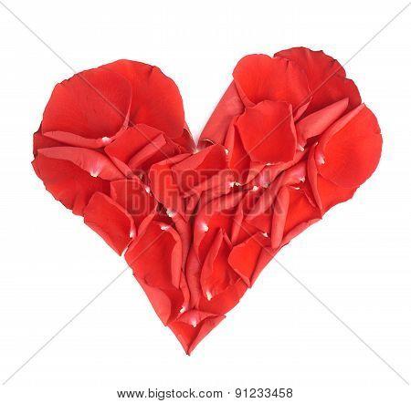 Heart shape rose petals composition