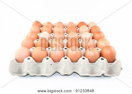 eggs in gray storage tray