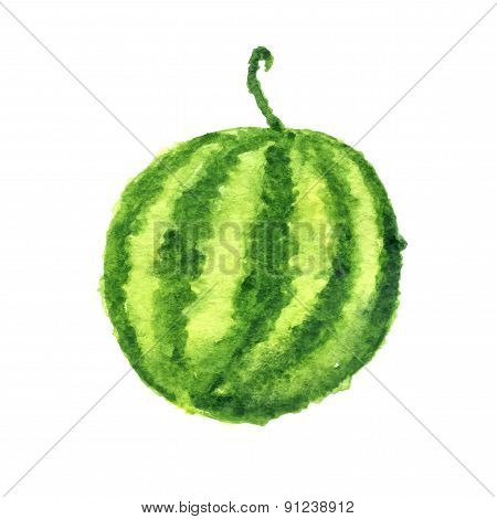 watercolor watermelon, isolated on white