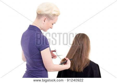 Young Beautiful Blonde Woman Hairdresser Doing  Haircut Isolated On White