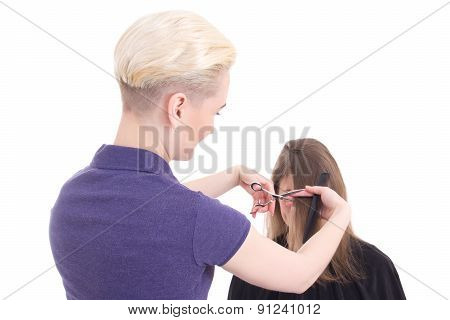 Female Hairdresser Doing Haircut To Client Isolated On White