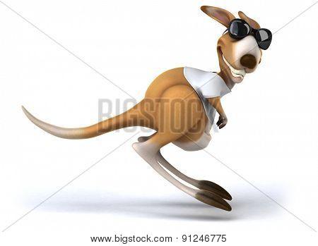 Fun kangaroo
