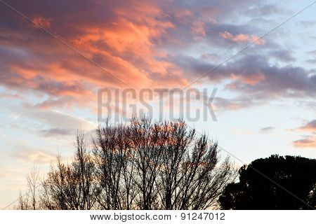 Idyllic red sky during a nice sunset