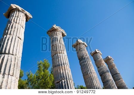 Priene, Ionic Columns In Temple Of Athena